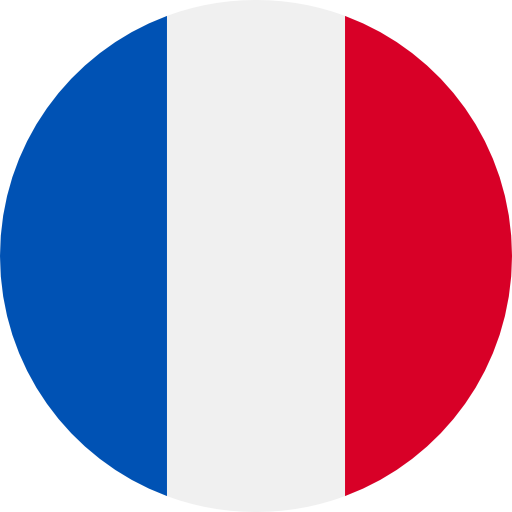 Tłumacz przysięgły francuski