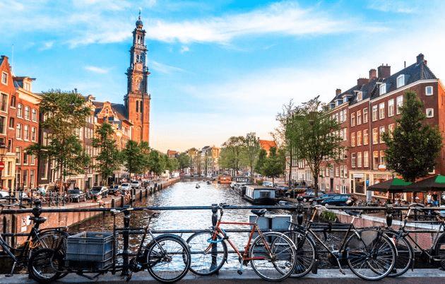 traductor de holandes - traducciones en holandes - agencia de traducciones holandes